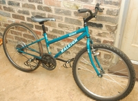 redneck_fg_bike.JPG