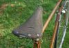 RP-saddle-from-rear.jpg