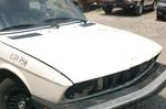 535i_partscar_hood.JPG